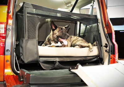 Dog Friendly Honda Element Bed and Ramp